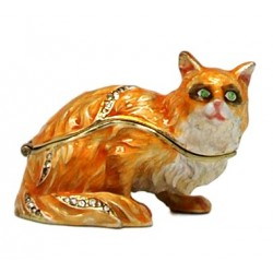Angry Cat Trinket Box