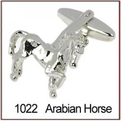 Arabian Horse Novelty...